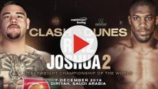 Boxe, Andy Ruiz Jr contro Anthony Joshua: la rivincita sabato 7 dicembre su DAZN