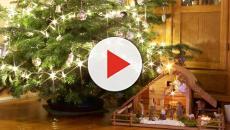 L'assessore Chiorino propone: 'Niente ferie per i presidi che non valorizzano il Natale'
