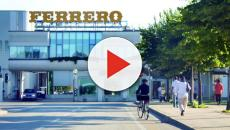 Ferrero ricerca giovani diplomati per i propri stabilimenti