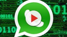 WhatsApp non funzionerà su iOS 8 e Android 2.3.7 con gli aggiornamenti di febbraio 2020
