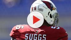 Terrell Suggs could be joining Patriots if NFL vets are correct