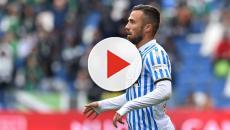 Torino-SPAL: Semplici riabbraccia Di Francesco