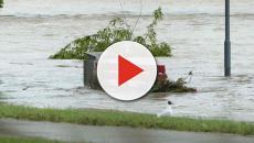 Maltempo: auto travolta dalla corrente, uomo muore in Friuli