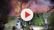 Fire in Krefeld Zoo at New Year killed more than 30 inmates