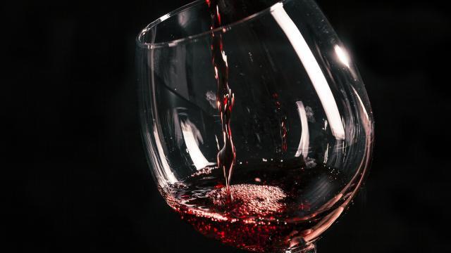 Assisi, 3^ edizione di 'Vini Veri': il 13 gennaio torna l'expo dei vini naturali italiani