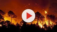 Los incendios del Amazonas y Australia calientan el planeta Tierra