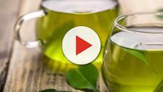 Tè verde, secondo uno studio cinese aiuterebbe a vivere più a lungo
