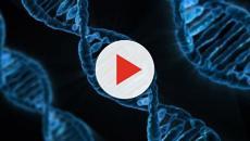 Cinquanta farmaci non oncologici sono efficaci contro il cancro