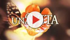 Anticipazioni Una Vita al 31 gennaio: Lucia bacia appassionatamente Telmo