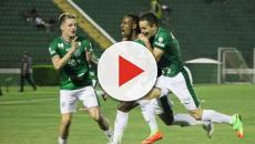 Goleadas de Palmeiras e Guarani foram destaques da abertura do Campeonato Paulista