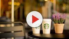 Reclutamento Starbucks: inizia il piano di sviluppo, previste 100 nuove assunzioni