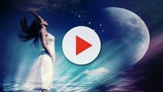 L'oroscopo dell'amore di coppia fino al 2 febbraio: Scorpione romantico, Acquario solare