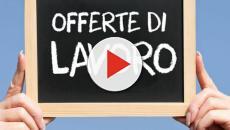 Assunzioni Leonardo, si ricercano 40 operai diplomati