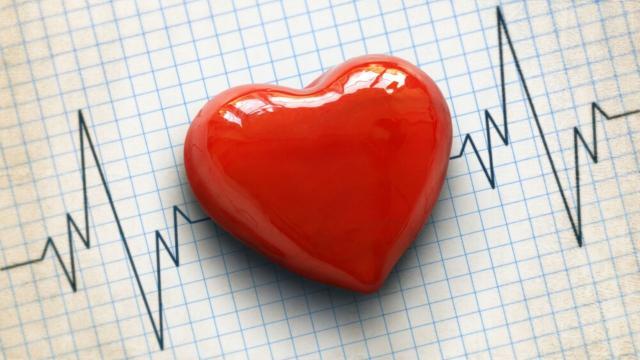 5 curiosidades a respeito do coração