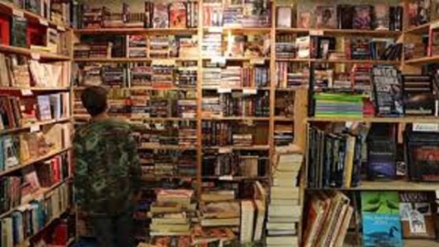 Dans une librairie canadienne, on peut lire et adopter un chat