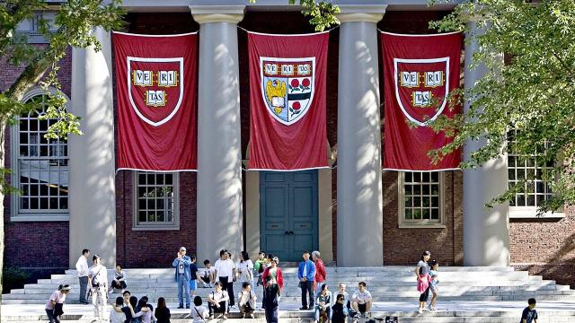 Harvard oferece cursos 100% online e gratuitos