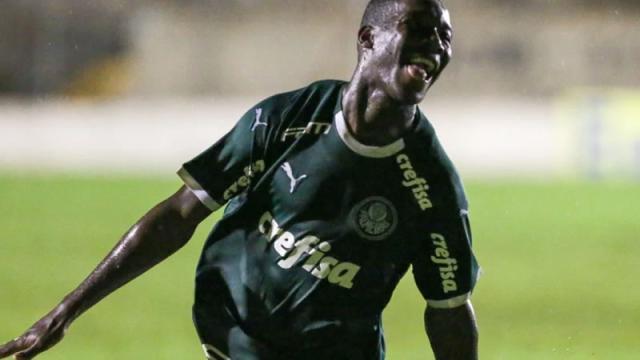 Dois jogadores podem desfalcar o Palmeiras na partida contra o Guarani