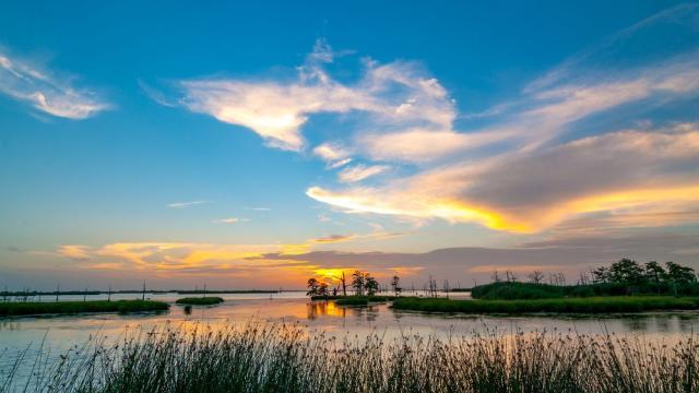 NASA to study rising sea level in Mississippi River Delta
