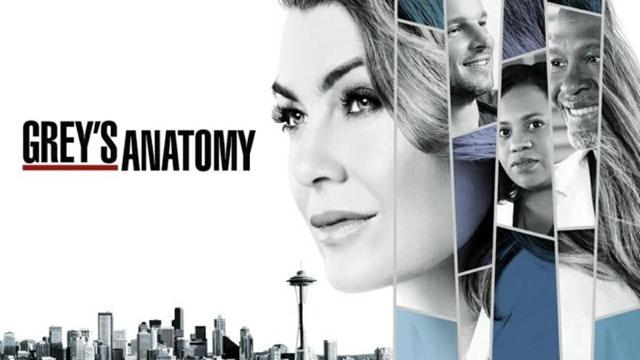Grey's Anatomy: per Gianniotti il Medical Drama potrebbe terminare dopo la stagione 17