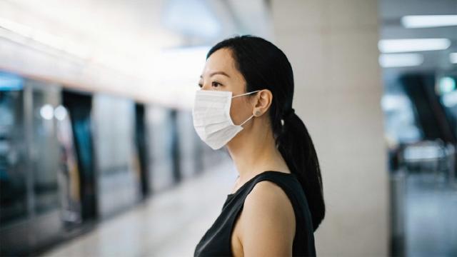 Tourism across the world took a hit due to coronavirus