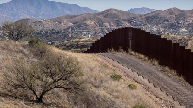 US-Mexico border wall could endanger the American jaguars