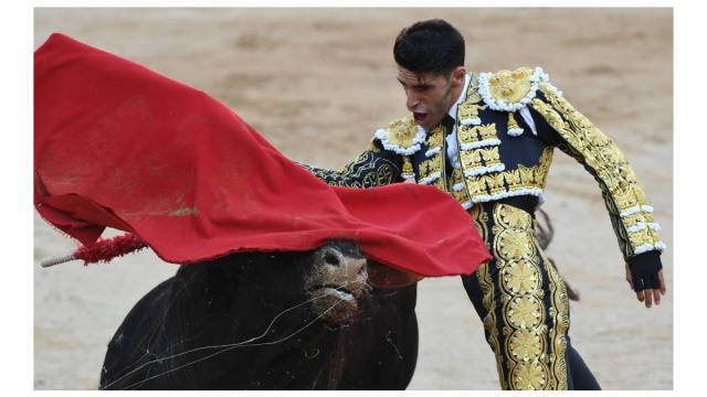Coronavírus poupa touros de lutas sangrentas na Espanha