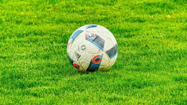 Calcio, al vaglio l'ipotesi di cristallizzazione della classifica di Serie A