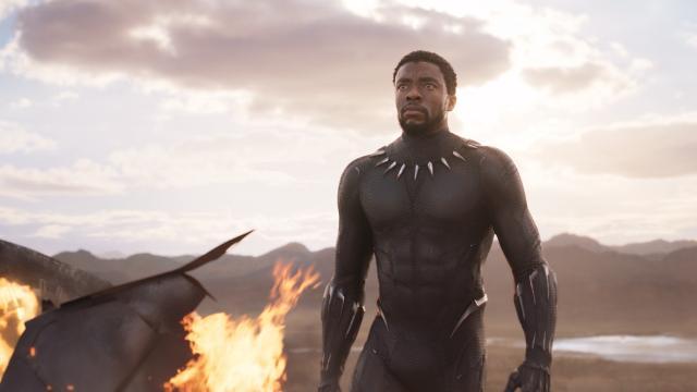 5 famosos integrantes do elenco de 'Pantera Negra'