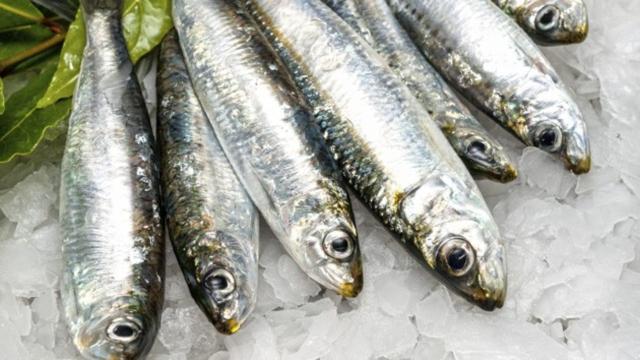 5 alimentos que são ricos em vitamina D