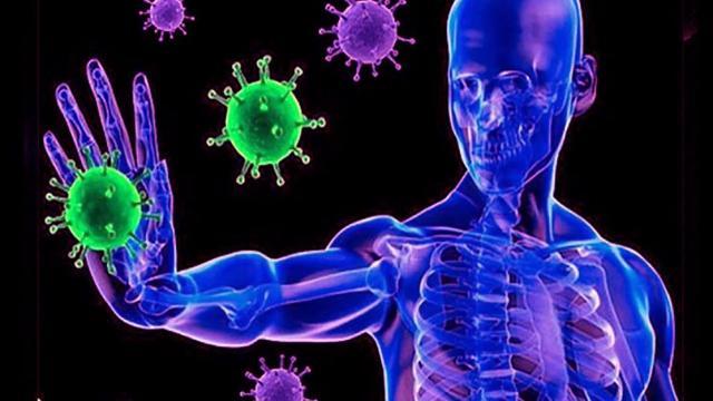 La medicina ayurvédica fortalece el sistema inmunitario