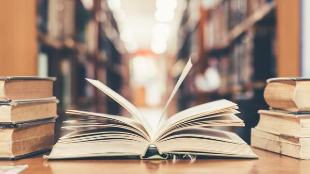 Cinco razões para adotar o hábito da leitura