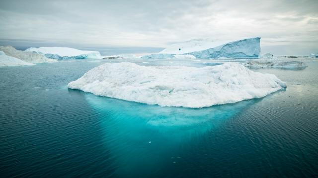 Università di Amburgo lancia allarme clima al Polo Nord: 'Senza ghiacci entro il 2050'