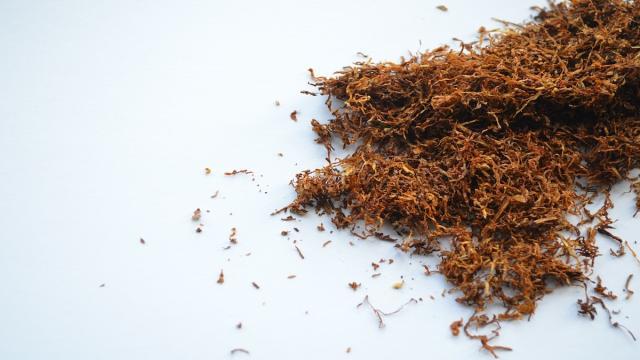 Coronavirus: La nicotina podría reducir el riesgo de contagio, según un estudio