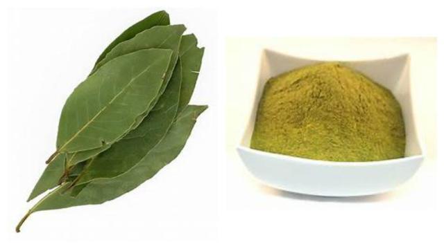 Santé : Brûler des feuilles de laurier aiderait à lutter contre le stress