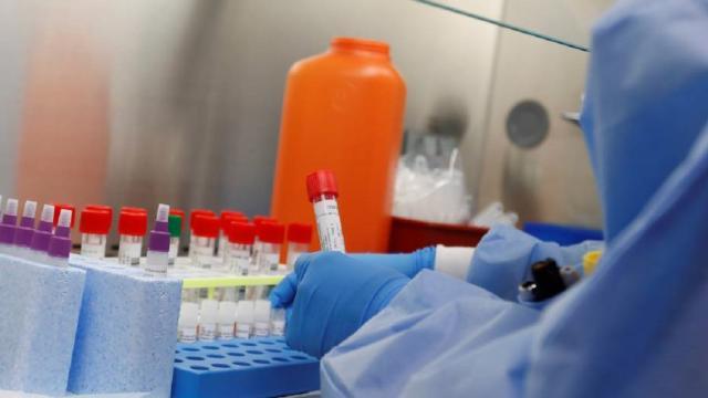 La vacuna del COVID-19 pasará por las fases de pruebas ratón, primate y humano