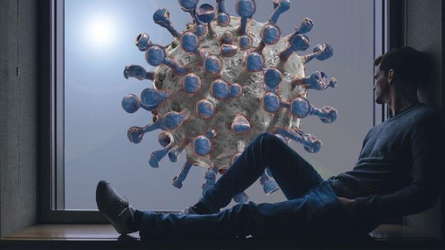 Para la OMS, el coronavirus se volverá endémico como el SIDA y no desaparecerá