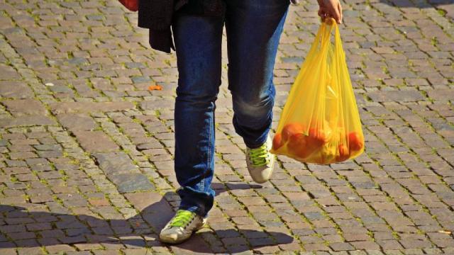 Ecología: el mundo concientiza con el Día Internacional Libre de Bolsas de Plástico