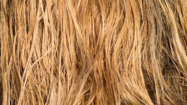 Tagli di capelli e acconciature, estate 2020: di tendenza la treccia e il long bob