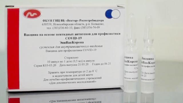 Rusia anunció su vacuna contra el coronavirus bautizada 'Sputnik V'
