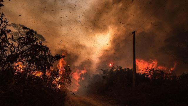 Queimadas no Pantanal se alastram e fumaça atinge outras regiões do Brasil
