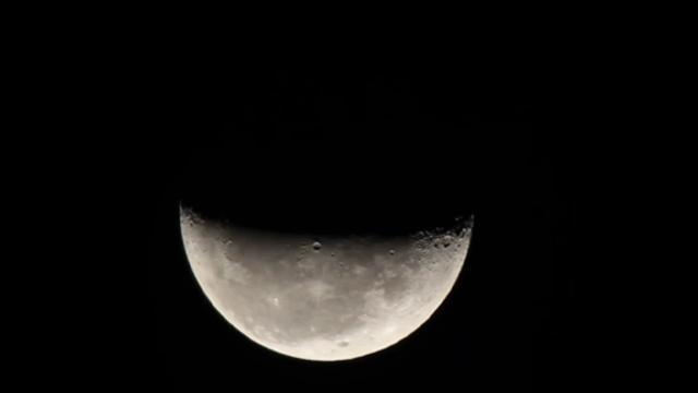 Oroscopo martedì 1° dicembre: Ariete i ripresa, ottima Luna per i Gemelli