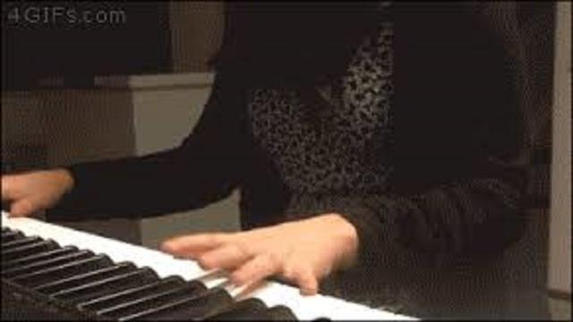 Le chat qui chante sur du Mozart fait le buzz