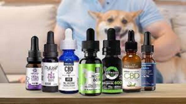 Le CBD, extrait du Cannabis, devient un nouveau traitement tendance pour les chiens